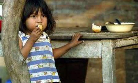 تعداد گرسنگان جهان بیش از ۲۰۰ میلیون نفر کاهش یافته است