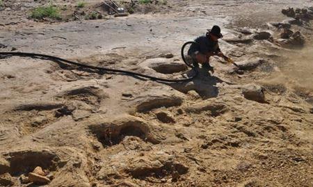 ردپای دایناسور غول پیکر در سواحل کوئینزلند استرالیا کشف شد