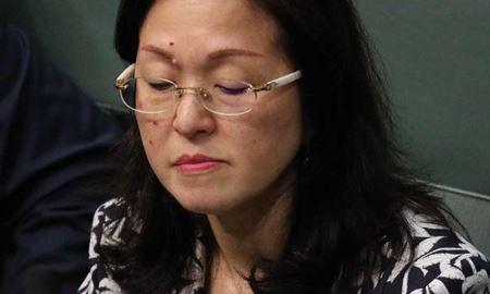 خانم گلادیس لو پیش ازانتخابات مقدماتی حزب لیبرال استرالیا ،عضویت خود در سازمان های وابسته به دولت چین را مخفی نگه داشت